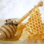 Ten una salud plena, consumiendo miel de abejas