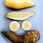 Yacón: uno de los alimentos ricos en fibra para el estreñimiento