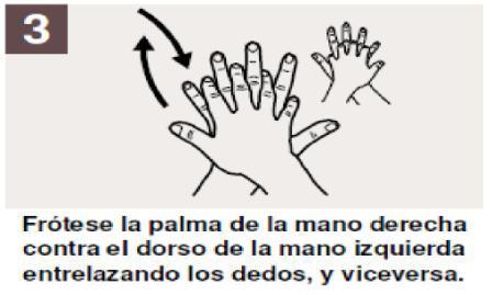 Técnicas de lavado de manos para una vida sin enfermedades | Salud y ...